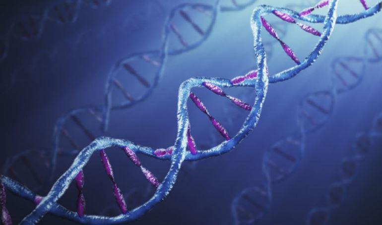 Лабораторные методы диагностики гепатита С