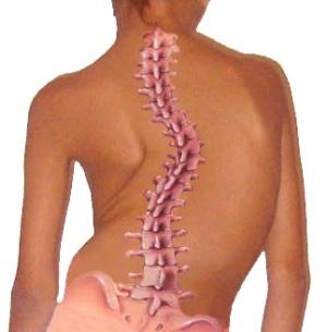 Что приводит к остеохондрозу