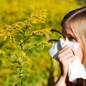 Какой механизм развития аллергической реакции при поллинозе