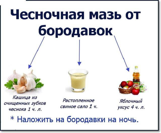 Методы лечения бородавок чесноком