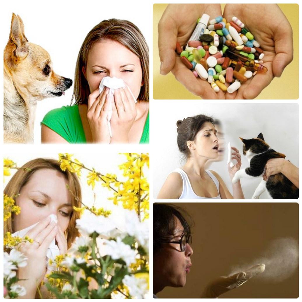 На что чаще всего возникает аллергия