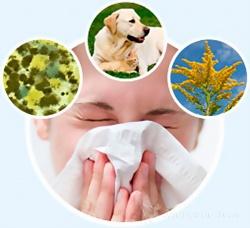 Аллерген