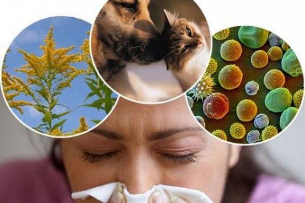 На что бывает аллергия